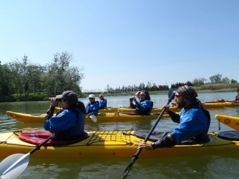Learn about the surroundings whilst kayaking