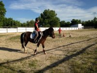 Track Riding Classes