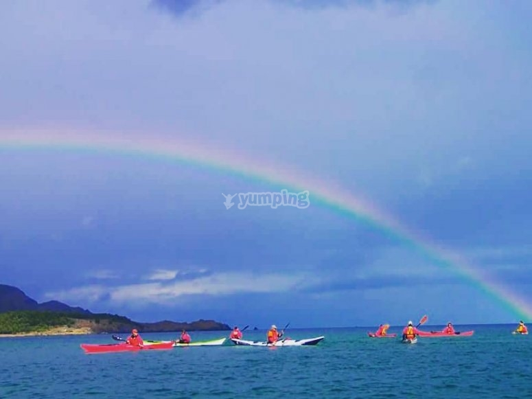Incredible sights from a kayak