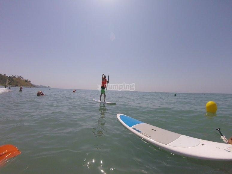 桨和大桨冲浪板