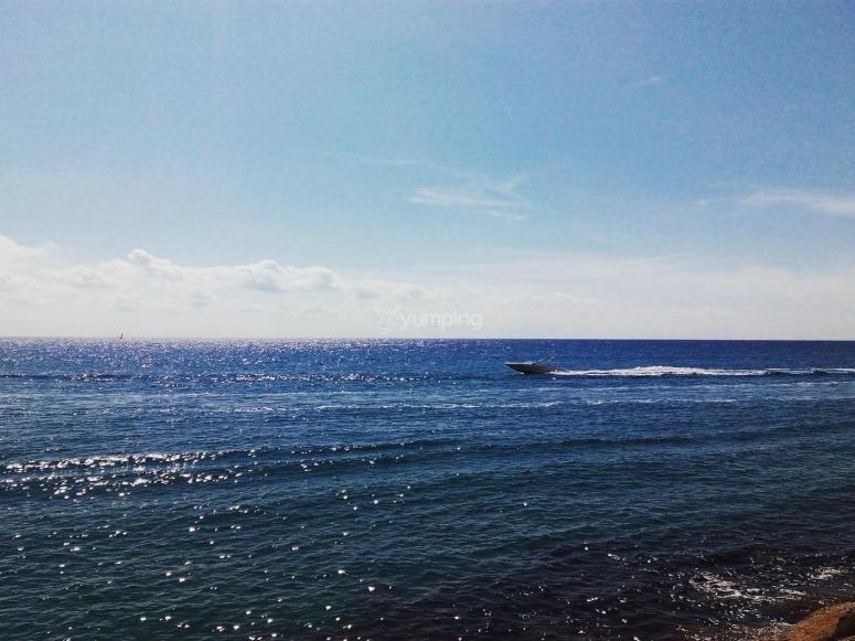 lancha navegando rápido en el mar