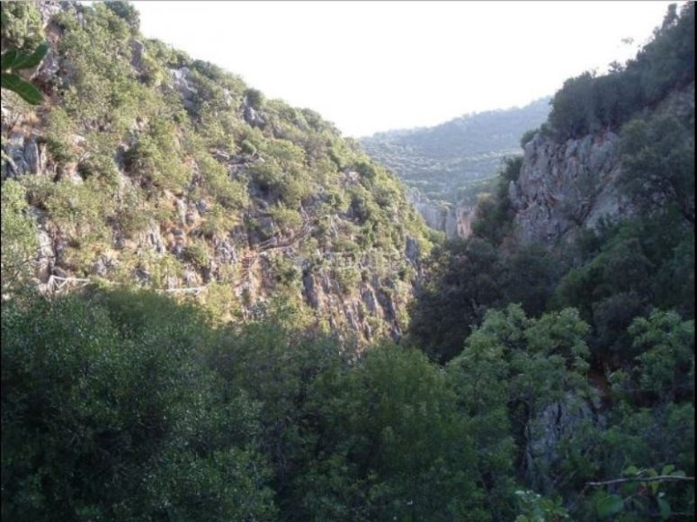 Barranco en Sierra de Cazorla
