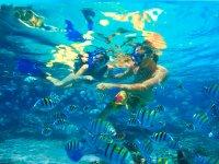 2小时在马略卡岛浮潜游览