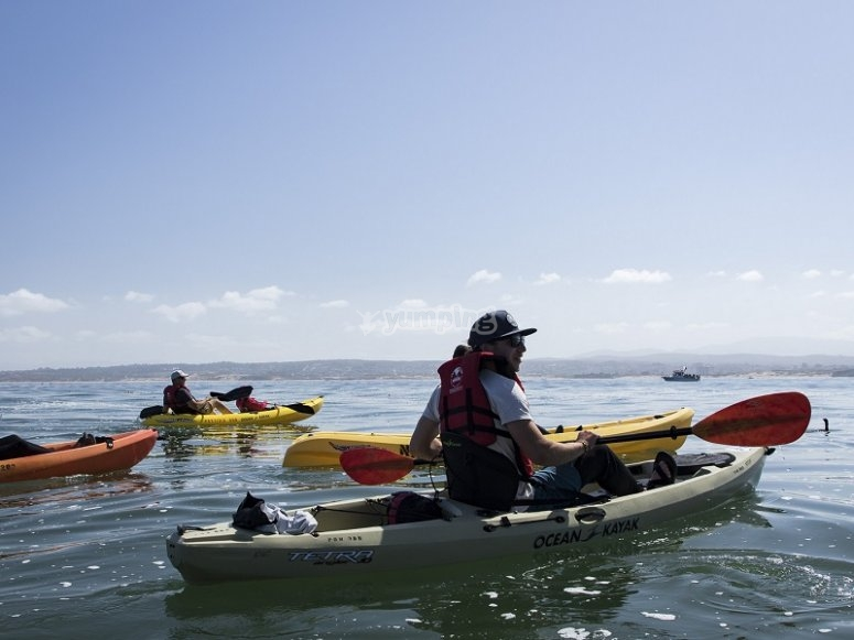 Grupo de kayaks junto a la costa