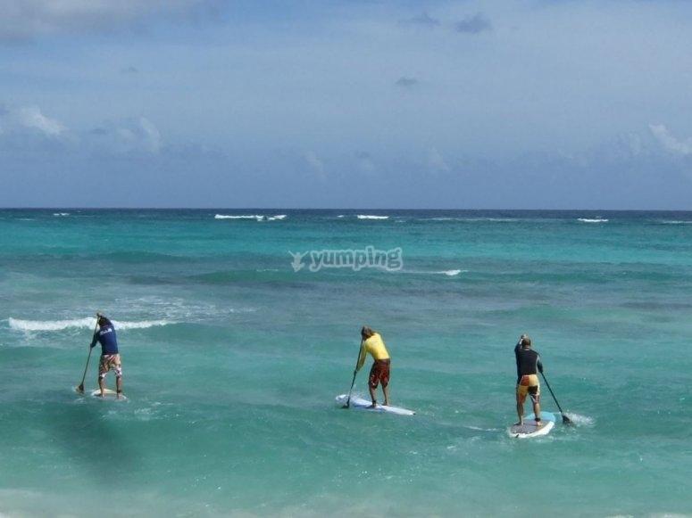 学习划桨冲浪