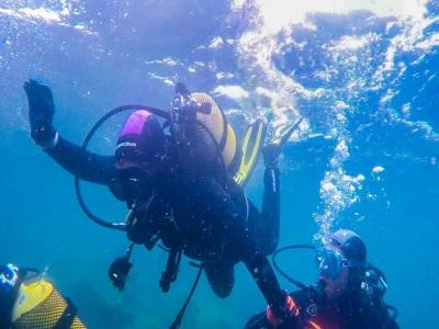 潜水在阿尔赫西拉斯海岸潜水