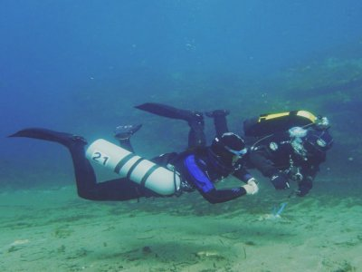 PADI Scuba Diver Course in the Cantabrian, Candás