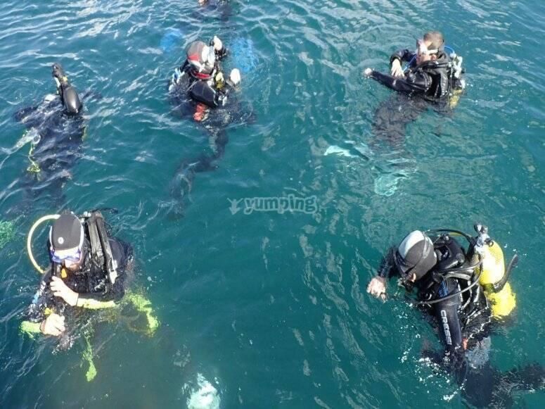 在公海中进行5次潜水