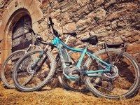 海滨自行车自行车车