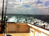 pescando al currican