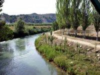 paisaje natural con un rio