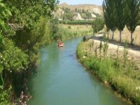 embarkation along a river between trees