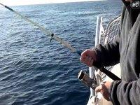 Pescando en Orihuela