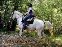骑马游览该地区