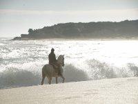 Cabalgando junto a las olas