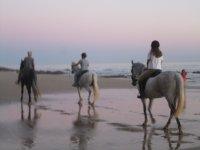 Paseo sobre la arena
