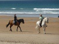 骑马在海滩安达卢西亚