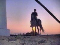 特拉法加灯塔日落骑马在沙滩上