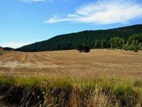 Turolense countryside