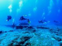 Fondos marinos espectaculares