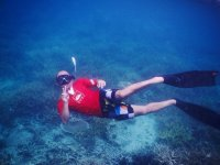 Practica snorkeling en la isla