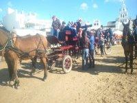 Arrivando in carrozze trainate da cavalli a El Roció