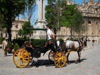 Visitano la città di El Rocío in una carrozza trainata da cavalli