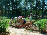 小孩生态工作坊