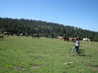 Bike routes to discover Gredos