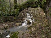 ¿Conoces el rio Guadalmesi?