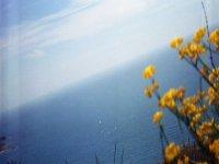 地中海的标志背景