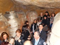 Guided tour of the winery