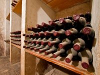 Visit the old winery