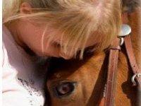 caballos y equinoterapia