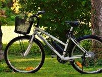 在公园里白色自行车