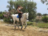 Sobre el caballo en el centro hípico