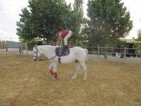Practicando equilibrio sobre el caballo