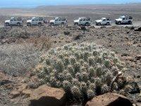 Ruta en jeep a Tilos de Moya Tarifa niños
