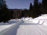 Cross-country skiing in Palencia