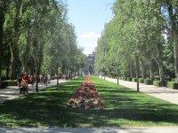 passeggia nel parco