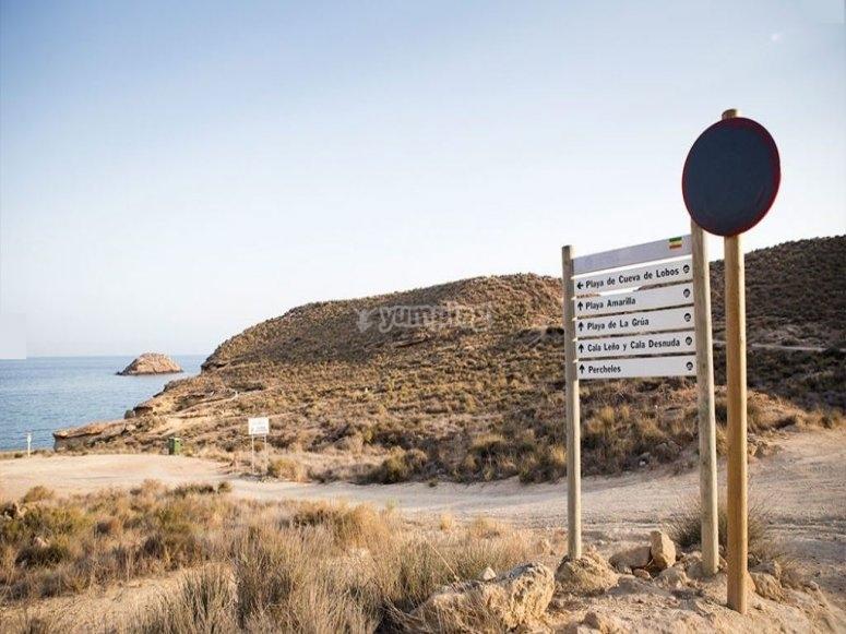 Get to know Murcia by bike