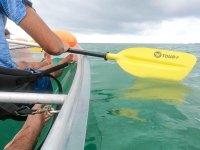 享受皮划艇路线