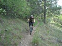 骑自行车沿着这条路走