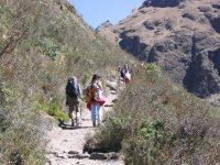 背包segovianos森林自然景观沿大热天的散步小道