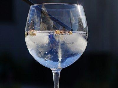 在马德里品尝杜松子酒补品工匠
