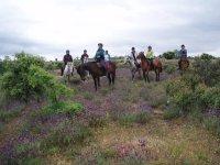 Grupo a caballo por los campos segovianos