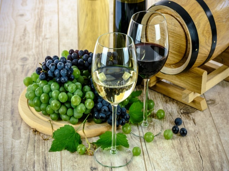 uvas barrica y vino