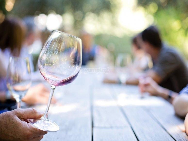 aprendiendo sobre los vinos