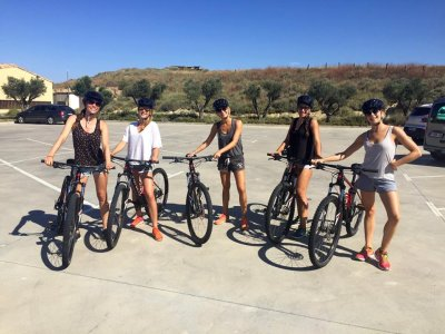 Rent an electric bike in Arguedas 1 day