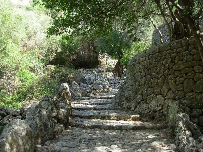 Stairs trail